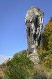 La roche de pierre à chaux a appelé Maczuga Herkulesa en Pologne Image libre de droits