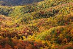 La roche de soufflement de feuillage d'automne donnent sur, Ridge Parkway bleu photo libre de droits