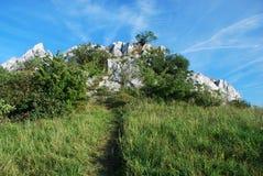 La roche du chat - République Tchèque Photos libres de droits