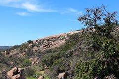 La roche enchantée avec frottent le chêne Photos stock