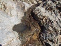 La roche est et un plat concave Photos stock