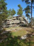 La roche la montagne avec les arbres cultivant sur elle un sapin a image stock