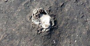 La roche noire avec la texture en pierre blanche, nature aménage le fond en parc images libres de droits