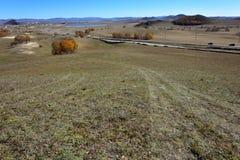 La rodera y el abedul en el prado en otoño imagenes de archivo