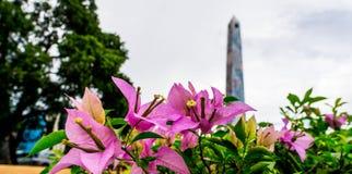 La Romana Dominican Republic de Obelisco imagen de archivo