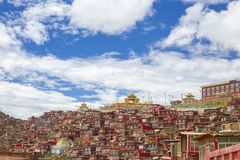 La Rong Temple Buddha Institute,Tibet,china royalty free stock photography