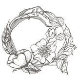 La rosa canina selvatica fiorisce il clipart di vettore del disegno della struttura su fondo bianco Immagine Stock