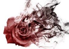 La rosa dal fumo fotografie stock libere da diritti