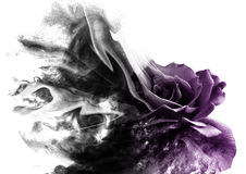 La rosa dal fumo fotografie stock