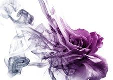 La rosa dal fumo immagini stock libere da diritti