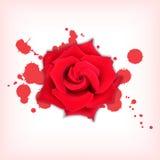 La rosa del rojo con salpica ilustración del vector