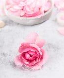 La rosa del rosa con agua cae en una tabla de mármol gris Foto de archivo