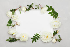 La rosa di bianco fiorisce, foglie verdi e strato di carta pulito su fondo grigio chiaro da sopra, bello modello floreale, pianam Fotografia Stock Libera da Diritti