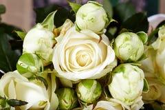 La rosa di bianco fiorisce il mazzo Fotografia Stock
