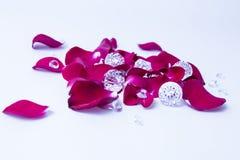 la rosa rossa si sfalda con i diamanti ai precedenti bianchi immagini stock