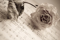 La rosa seca está mintiendo en notas Fotografía de archivo