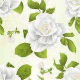 La rosa senza cuciture di bianco del fiore del gambo di struttura e lo sfondo naturale d'annata delle foglie vector l'illustrazio royalty illustrazione gratis