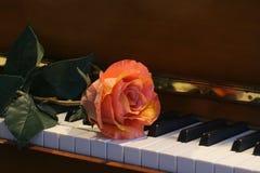 La rosafarbene du piano stockfotografie