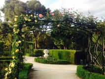 La Rosaleda Rose Garden i Retiro parkerar Madrid Royaltyfria Foton