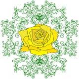 La rose de jaune dans les branches, feuillage, a isolé le fond blanc Illustration de Vecteur
