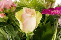 La rose de rose dans le bouquet de s'abaisse photos libres de droits