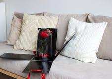 La rose de rouge dans une boîte noire comme cadeau, un durable s'est levée dans un flacon préservé images stock