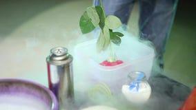 La rose de rouge de fleur congelée en azote liquide éclate banque de vidéos