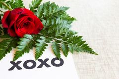 La rose rouge avec la verdure orne des étreintes et embrasse le symbole sur un fond blanc images stock