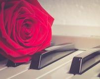 La rose rouge se trouvant sur des clés de piano Photographie stock libre de droits