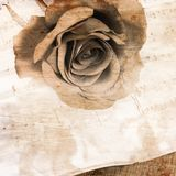 La rose sur des carnets avec des notes Photos libres de droits