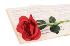 La rose sur des carnets avec des notes Image libre de droits