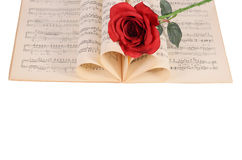 La rose sur des carnets avec des notes Photographie stock