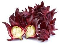 La rosella fruttifica uso della Tailandia per succo dolce locale fatto su bianco Fotografia Stock