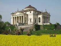 La Rotonda da casa de campo de Palladio com um campo amarelo da colza em Vicenza, Itália Foto de Stock Royalty Free