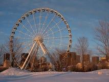 La roue d'observation de Montréal au vieux port à Montréal dans d'or photo stock