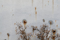 La rouille sur le fond en métal Photographie stock libre de droits
