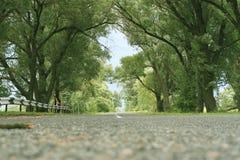 La route à Chernobyl Photo stock