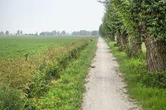 La route à Schokland images libres de droits