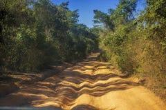 La route à Tsingy de Bemaraha Image libre de droits