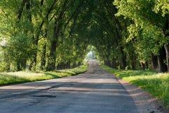 La route Photos libres de droits