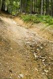 La route Images stock