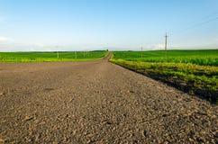 La route asphaltée dans un domaine vert s'est allumée avec une lumière du soleil Photographie stock