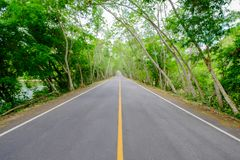 La route avec ne passent pas avec la ligne est solide, du côté o de route Image stock