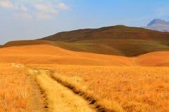 La route, chemin en montagnes de dragon de Drakensberg aménagent en parc Image libre de droits