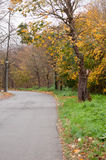 La route courbe à gauche à côté de la forêt Photographie stock