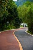 La route d'enroulement en parc photographie stock