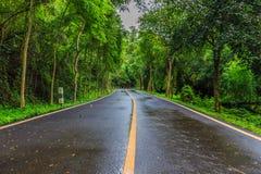 La route d'enroulement et la région boisée dense qui mène Photos stock