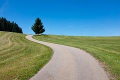 La route d'enroulement mène à un arbre et à un banc dans la distance, forêt noire, Allemagne Images stock