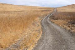 La route d'incendie enroule vers le haut une côte d'herbe sèche Images stock