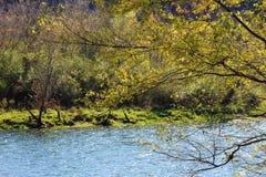 La route de rivière Images stock